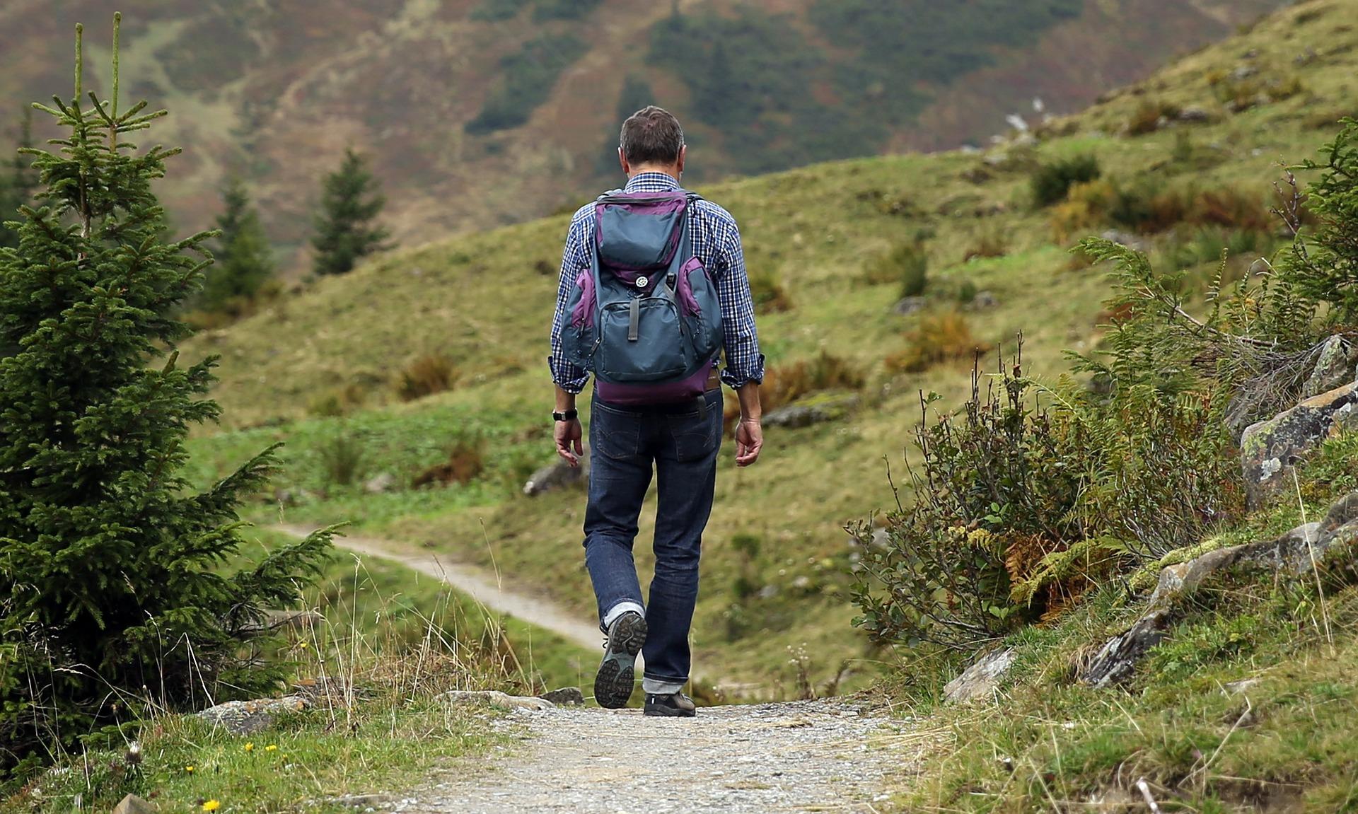 elke dag wandelen
